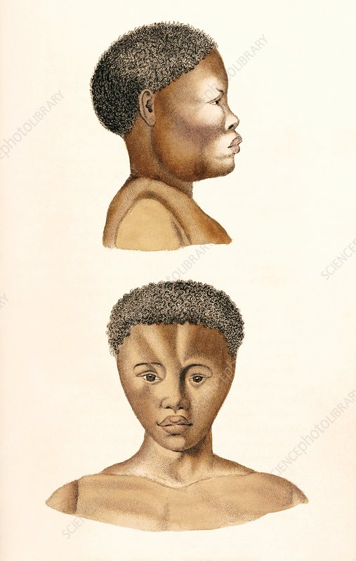 African woman, 19th century artwork