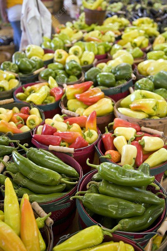 Fruit stall, USA