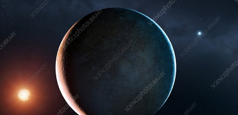 Planet of a Double Star