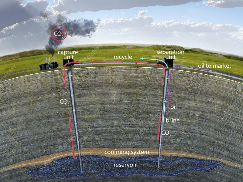Carbon sequestration, illustration