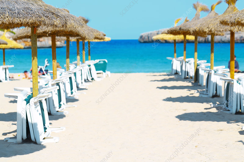 Beach parasols and loungers