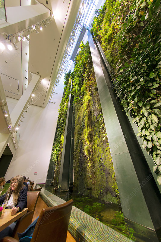 Vertical garden, Berlin, Germany