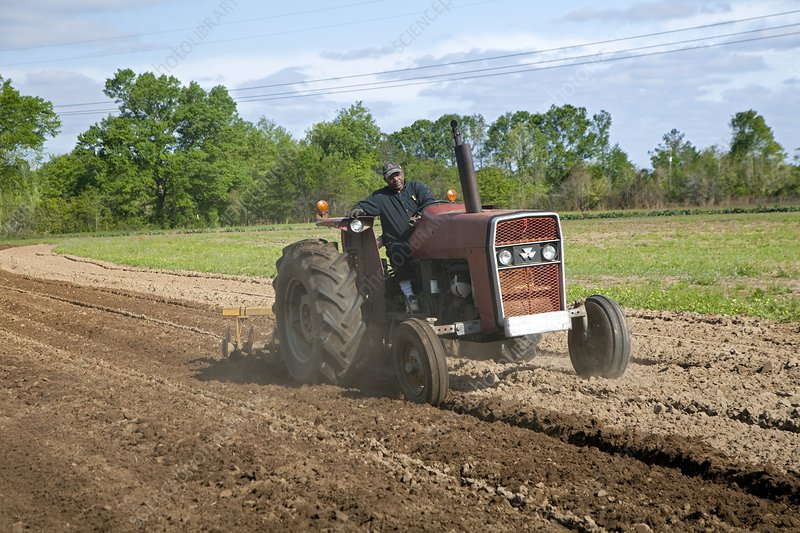 Tractor ploughing a field