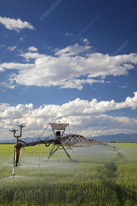 Agricultural irrigation system