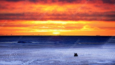 Sunset over Beaufort Sea Alaska