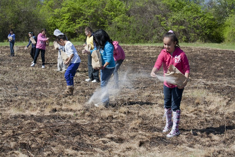 Schoolchildren sowing seeds