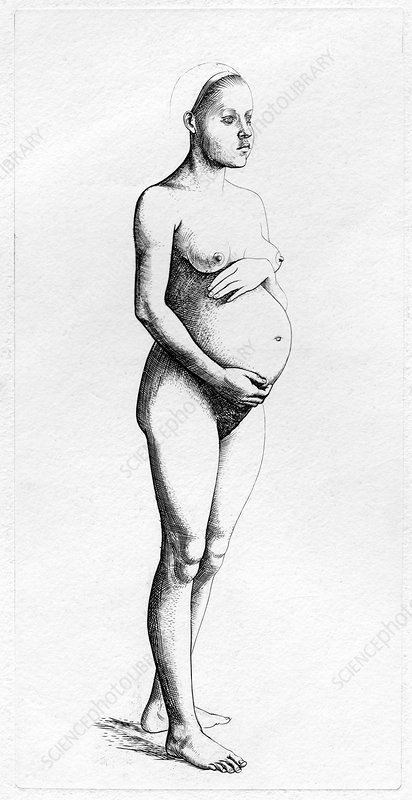 Pregnant woman, historical illustration