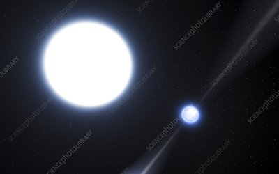 Neutron star and white dwarf system