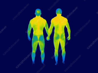 Male couple holding hands, thermogram