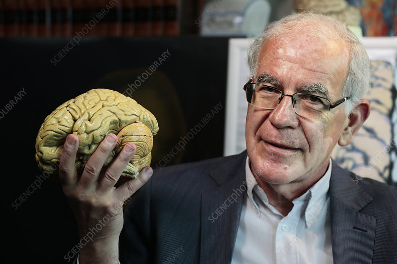 I was born with a dick in the brain