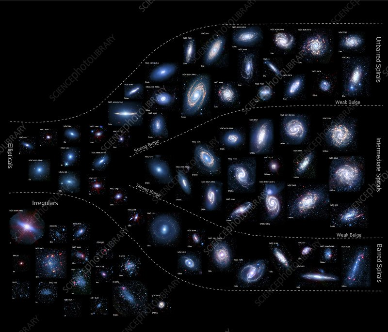Earth's neighbouring galaxies
