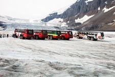Tourist ice buggies on Athabasca glacier