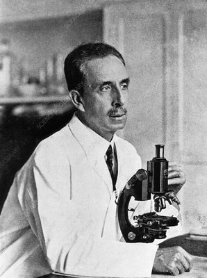 Carlos Chagas, Brazilian bacteriologist