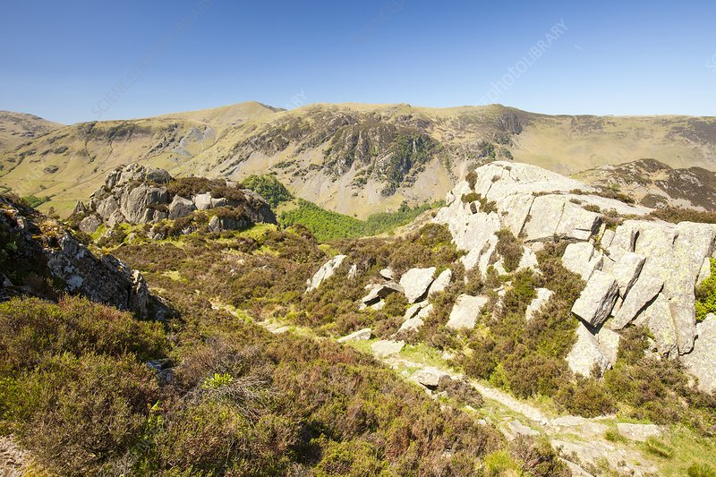 Borrowdale Valley United Kingdom  city pictures gallery : Borrowdale valley, UK Stock Image C023/1945 Science Photo Library