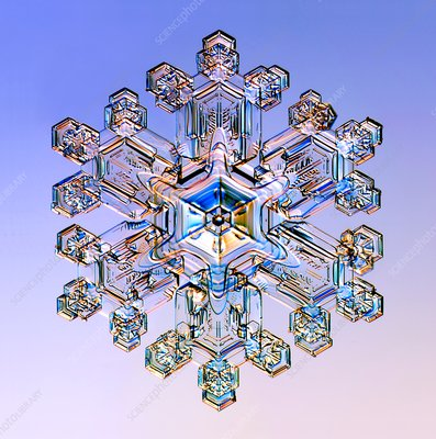 Snowflake, light micrograph