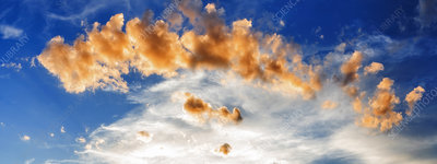 Cumulus clouds at sunset