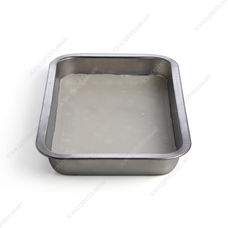 Metal dissection tray