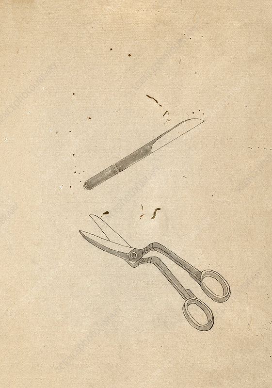Surgical tools, 19th-century Japan
