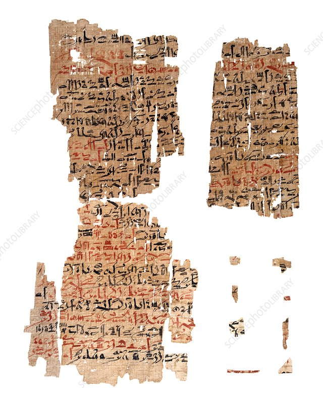 Edwin Smith Papyrus, Egyptian surgery - Stock Image - C023