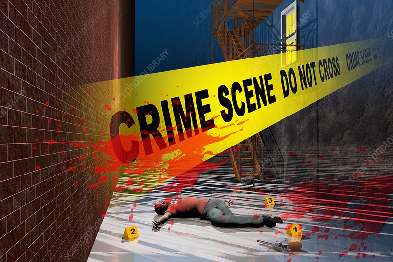 Crime Scene, illustration
