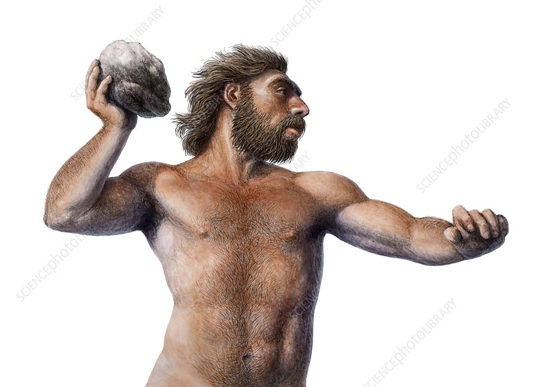 Neanderthal throwing a rock, illustration