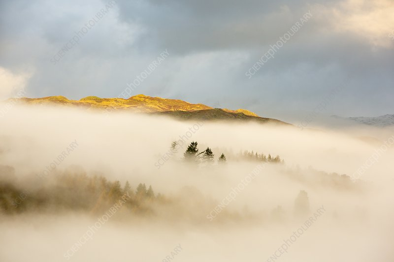 Mist over Todd Crag, UK