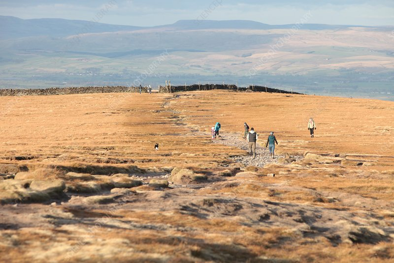 Walkers near the summit of Pendle hill,