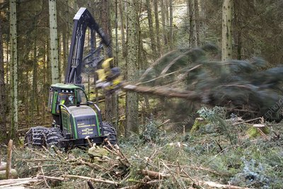 Forwarder forestry vehicle