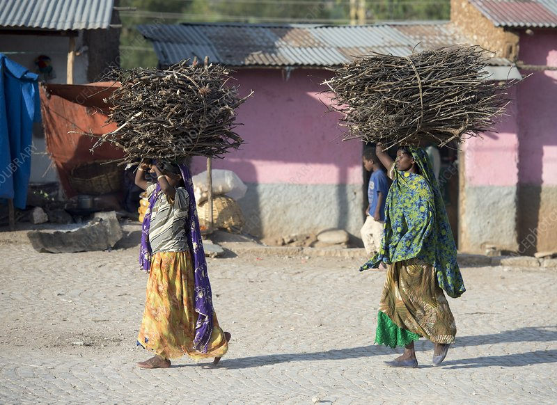 Women with fire wood bundles
