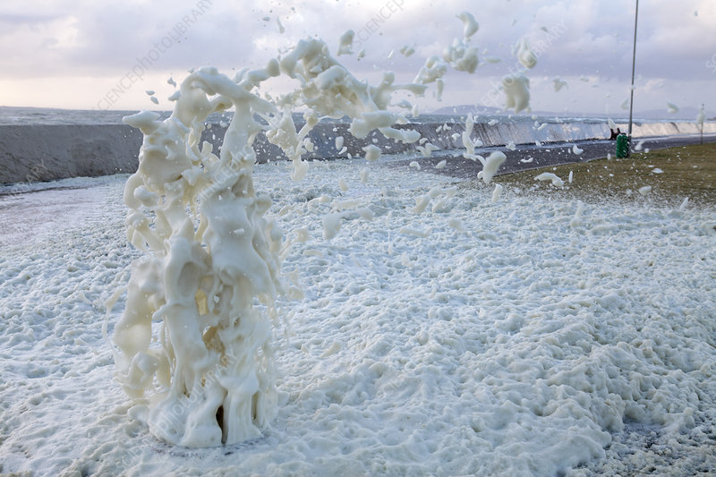 Sea foam after a storm