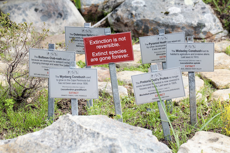 Extinction signs, South Africa