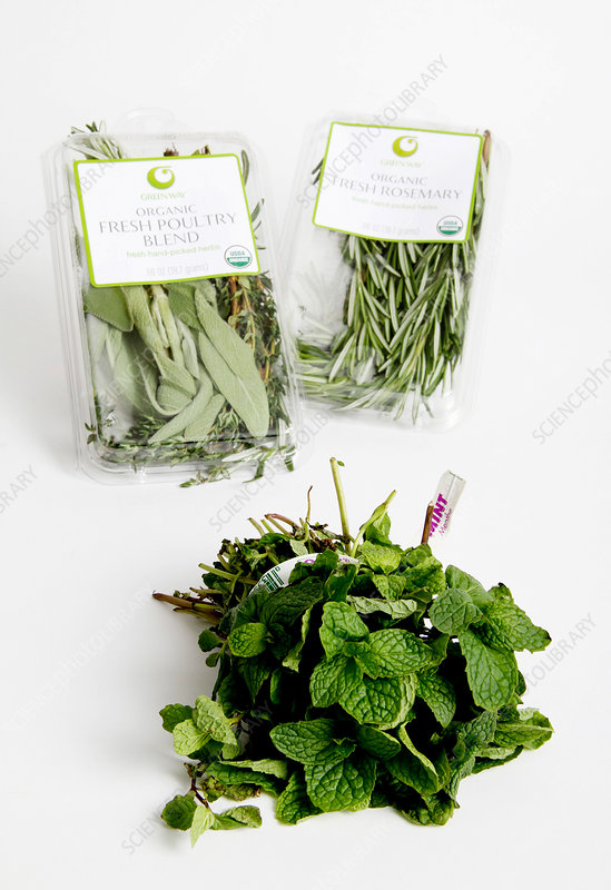 Organic Poultry Blend, Mint and Rosemary
