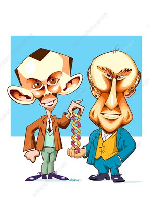 Watson and Crick, discoverers of DNA