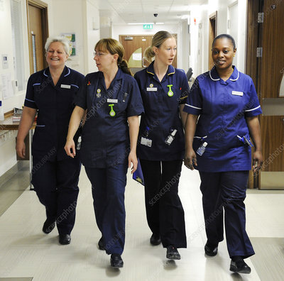Infection control nurses