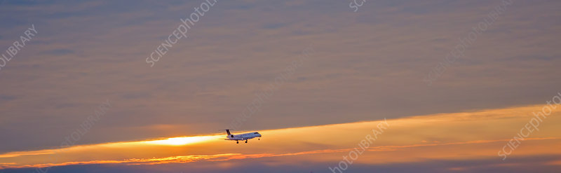 Passenger airliner landing at dawn
