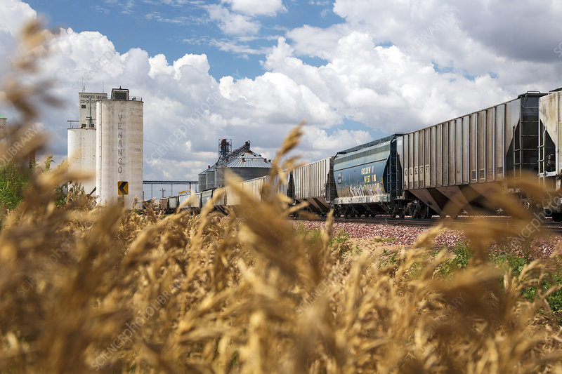 Grain elevators and railway