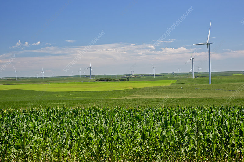 Wind turbines on Nebraska farm