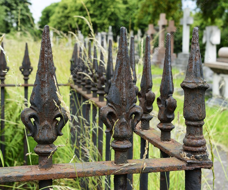 Iron railing in urban cemetery