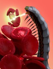 Nanobot destroying blood clot, concept