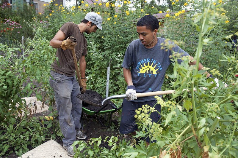 Community garden volunteers