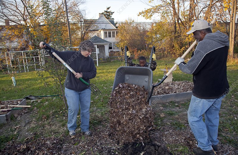 Winter mulching in a community garden