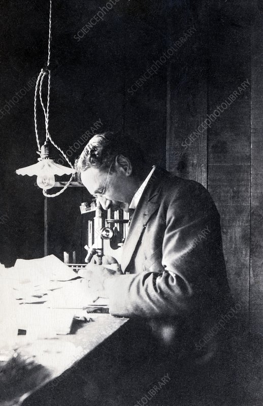 Jacques Loeb, German-US physiologist