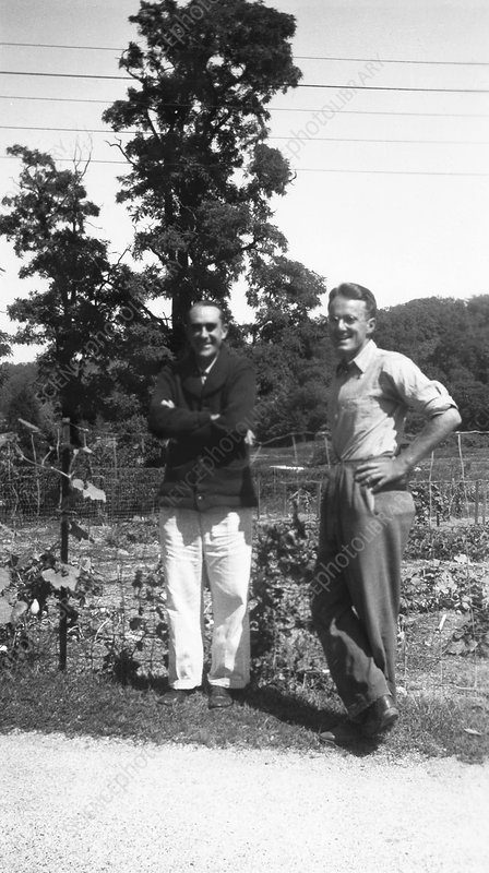 Gowen and Nason, US geneticists