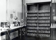 Genetics research fly room, 1920s