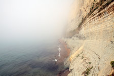 Sea mist and sandstone cliffs