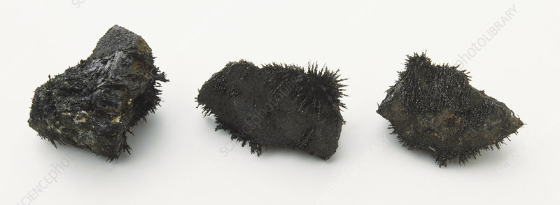 Three pieces of magnetic mineral
