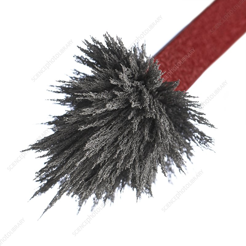 Iron filings on a magnet