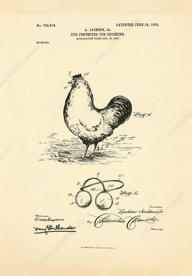 Eyeglasses for chickens patent, 1903