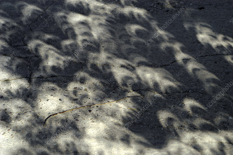 Solar eclipse shadows