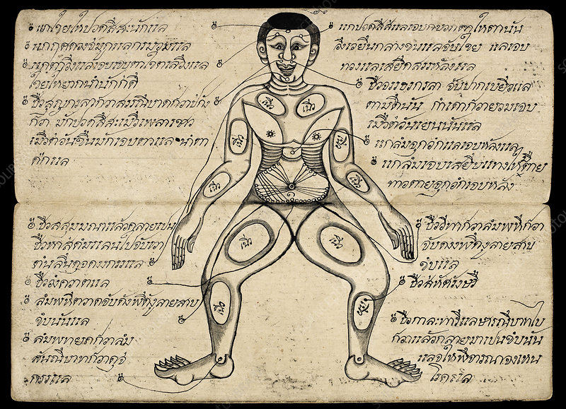 Pressure points, 19th Century manuscript
